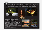 Seasons: Photographs from Muskoka and Beyond
