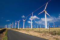 Kamoa Wind Farm, South Point Road, Big Island, Hawaii