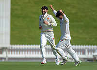 Wellington's Fraser Colson congratulates Michael Snedden on catching Canterbury's Andrew Hazeldine during day four of the Plunket Shield cricket match between the Wellington Firebirds and Canterbury at Basin Reserve in Wellington, New Zealand on Friday, 1 November 2019. Photo: Dave Lintott / lintottphoto.co.nz