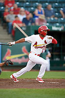 Springfield Cardinals left fielder Magneuris Sierra (29) at bat during a game against the Corpus Christi Hooks on May 30, 2017 at Hammons Field in Springfield, Missouri.  Springfield defeated Corpus Christi 4-3.  (Mike Janes/Four Seam Images)