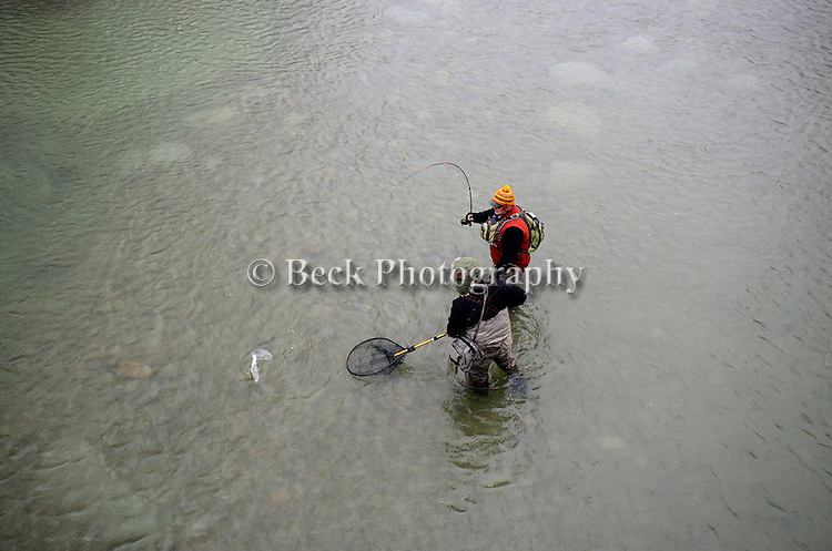 FLY FISHING FOR STEELHEAD IN A LAKE ERIE TRIBUTARY