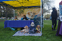 The 2nd Annual Seize The Moment run was held at Crocker Park in Sacramento, California on March, 25, 2018.