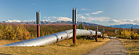 Trans Alaska oil pipeline traverses the tundra through the Alaska range mountains, south of Delta Junction, Alaska.