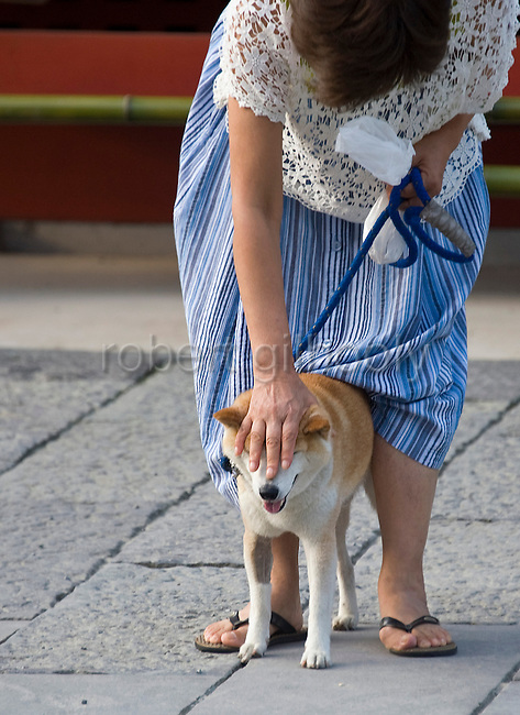 A woman and her dog bow in prayer in front of the inner sanctuary  during the annual Reitaisai Grand Festival at Tsurugaoka Hachimangu Shrine in Kamakura, Japan on  14 Sept. 2012.  Sept 14 marks the first day of the 3-day Reitaisai festival, which starts early in the morning when shrine priests and officials perform a purification ritual in the ocean during a rite known as hamaorisai and limaxes with a display of yabusame horseback archery. Photographer: Robert Gilhooly