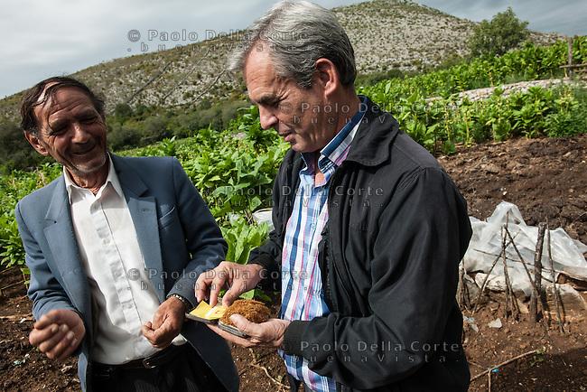 Albania - Luigj Simoni è un produttore di tabacco che lavora poco distante da Scutari, nel Nord dell'Albania.