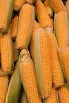 West Jerusalem, Israel, Machane' Yehuda market. Corn on display<br />