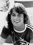 Andy Gibb 1977