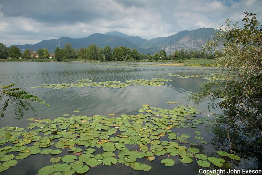 Torbiere Sebino wetland nature reserve, Iseo, Lombardy, Itlay.