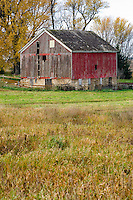 A gable roofed red barn in southern Minnesota during Autumn.
