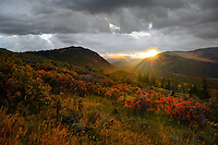 A clearing autumn storm passes over the Uinta Mountains as warming rays  illuminate scrub oak above Oakley, Utah.  October 2011...