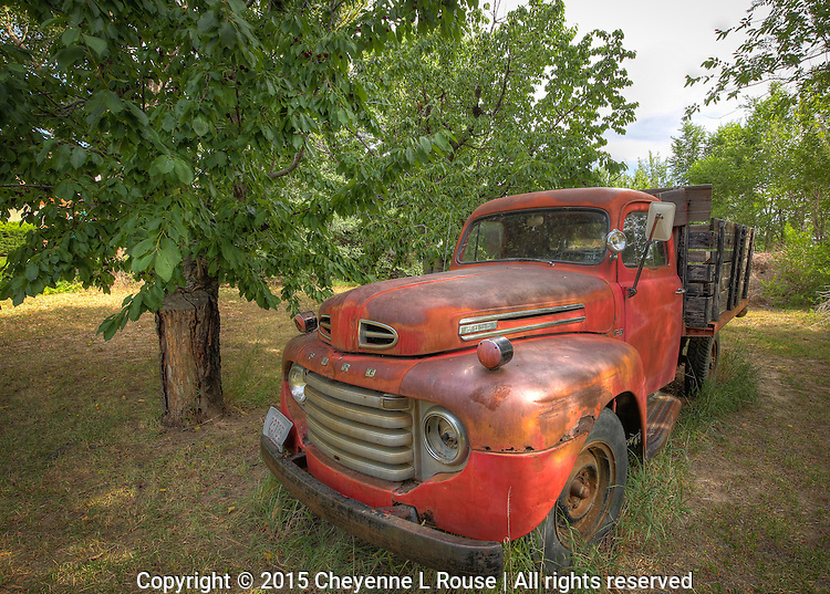 Cherry Orchard Ford<br /> Colorado