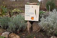 Blätter vom Spitz-Wegerich, Spitzwegerich, Wegerich werden gemeinsam mit Honig in ein verschießbares Glas gefüllt und etwa 3 Monate lang im Erdboden vergraben, wirkt anschließend als Hustensaft, Hustensirup, bemaltes Schild im Garten erinnert an die Stelle, wo das Glas vergraben  wurde