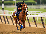 ELMONT, NY - JUNE 07: Justify with Humberto Gomez aboard gallops in preparation for the 150th Belmont Stakes at Belmont Park on June 07, 2018 in Elmont, New York. (Photo by Alex Evers/Eclipse Sportswire/Getty Images)
