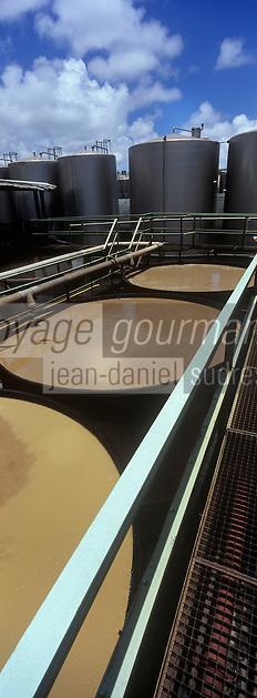 France/DOM/Martinique/ Le François: Distillerie du Simon- Les cuves à fermentation