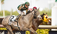 HALLANDALE BEACH, FL - JANUARY 27: Jordan's Henny #2, with Tyler Gaffalione riding, wins the Hurricane Bertie Stakes on Pegasus World Cup Invitational Day at Gulfstream Park Race Track on January 27, 2018 in Hallandale Beach, Florida. (Photo by Carson Dennis/Eclipse Sportswire/Getty Images)