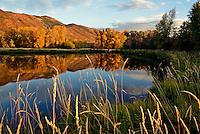 Near Oakley, Utah.  October 4, 2012.