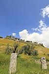Samaria, Sebastia, the colonnaded street of the Roman city Sebaste, built in the 2nd century A.D.