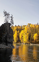 A large boulder marks a turn in Alaska's Kenai River canyon at the peak of fall colors.