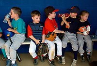 Adam Glaze, Cameron Hartz, Joe Fisher, Michael Lamper, and Leann Brown each find their own way to pass the time while they aren't playing in the 5 and 6 year olds Tee-Ball All-Stars Game.