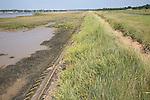 Flood protection dyke, River Deben, Sutton, Suffolk, England
