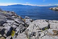 STrait of Georgia near Sechelt, Smuggler Cove Marine Provincial Park, British Columbia, Canada