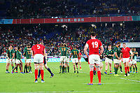 27th October 2019, Oita, Japan; South African players celebrate as Welsh players look on dejected;  2019 Rugby World Cup Semi-final match between Wales 16-19 South Africa at International Stadium Yokohama in Yokohama, Kanagawa, Japan.   - Editorial Use