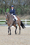 18/12/2015 - Class 7 - British Dressage - Brook Farm Training centre