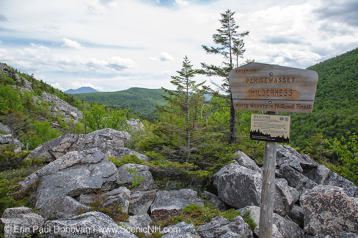 Pemigewasset Wilderness sign on the Zeacliff Trail in the White Mountains, New Hampshire USA during the summer months.