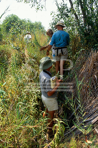 Lukulu, Zambia, Africa. Ecotourists on safari with birdwatching book.