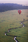 A hot air balloon floating over a meandering stream, open savannah grasslands and forest in the Masai Mara National Reserve, Kenya.