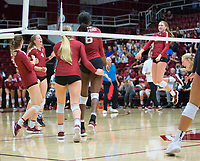 STANFORD, CA - November 3, 2018: Kate Formico, Tami Alade, Meghan McClure, Sidney Wilson, Kathryn Plummer at Maples Pavilion. No. 1 Stanford Cardinal defeated No. 15 Colorado Buffaloes 3-2.