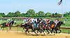 Start Jumping winning at Delaware Park on 8/18/16