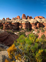 Art in Nature 9705-0103 - Elephant Drops. Elephant Hill as seen along a rugged trail in the Needles District of Canyonlands National Park. Utah.
