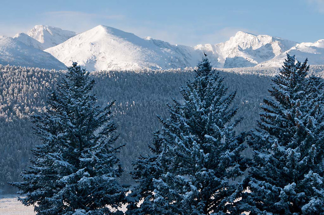Front Range, snowcapped, peaks, spruce, shapes, landscape, forest, winter, morning, snow, Rocky Mountain National Park, Colorado, USA