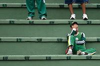 ATENÇÃO EDITOR: FOTO EMBARGADA PARA VEÍCULOS INTERNACIONAIS - SÃO PAULO, SP, 25 DE NOVEMBRO DE 2012 - CAMPEONATO BRASILEIRO - PALMEIRAS x ATLETICO GOIANIENSE: Torcida do Palmeiras durante partida Palmeiras x Atletico Goianiense, válida pela 37ª rodada do Campeonato Brasileiro no Estádio do Pacaembú. FOTO: LEVI BIANCO - BRAZIL PHOTO PRESS