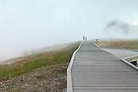 A father and son walk through the misty, hot vapor toward the Grand Prismatic Hot Spring.