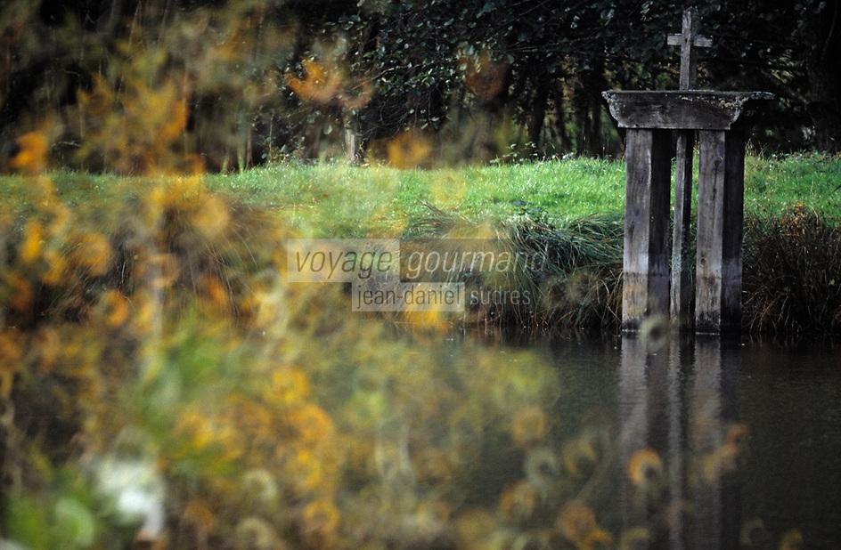 Europe/France/Centre/41/Loir-et-Cher/Sologne/Env La Ferté-Saint-Aubin: Paysage de Sologne ,bonde d'un étang