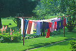 Colorful clothesline with summer garden and flowers.