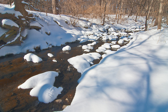Sawmill Creek slowly flows in Winter through Black Partridge Woods Forest Preserve in Cook County, Illilnois