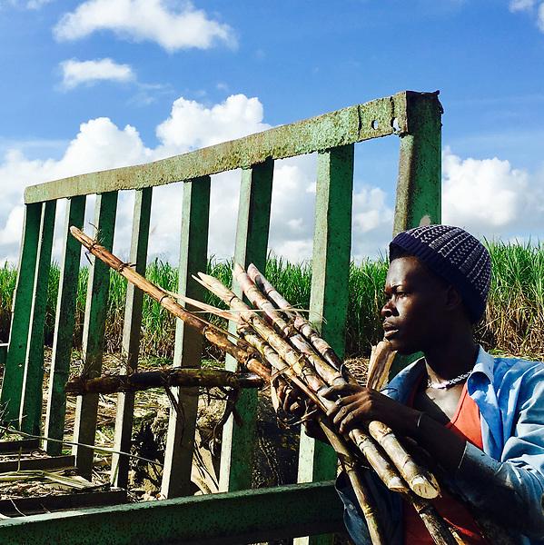 """STO03. SANTO DOMINGO (REPÚBLICA DOMINICANA), 06/07/2017.- Fotografía de Erika Santelices, cedida por la Comunidad Everyday.dr donde se muestra a un trabajador en un campo de caña azucarera en La Romana, la cual es una de las 100 imágenes que integran la exposición """"Everyday Dominican Republic - Miradas Cotidianas"""", que se exhibe en Santo Domingo (República Dominicana). Lo novedoso de esta muestra es que todas las fotografías expuestas han sido tomadas únicamente con teléfono móvil, emulando el formato cuadrado original de la popular red social Instagram, y ofrece vistas a una realidad que suele pasar desapercibida, por lo común de las escenas que capturan. EFE/Everyday.DR/SOLO USO EDITORIAL/NO VENTAS"""