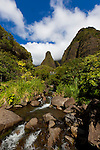 Maui, Hawaii. Iao Valley is a lush, stream-cut valley in West Maui, Hawaii, west of Wailuku.  Because of its natural beauty and historical significance, it has become a popular tourist location.The state park is located on 6.2 acres at the end of Iao Valley Road (Highway 32). The Iao Needle (Kkaemoku) is a famous landmark in the state park, a vegetation-covered lava remnant rising 1,200 feet from the valley floor. The needle is surrounded by the cliffs of the West Maui Mountains, an extinct volcano.
