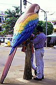 Altamira, Brazil. Novelty telephone booth in the form of a Macaw parrot with a man making a call. Para State.
