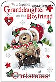 Jonny, CHRISTMAS ANIMALS, WEIHNACHTEN TIERE, NAVIDAD ANIMALES, paintings+++++,GBJJXFJ27,#xa#