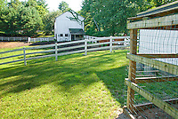 Barn, paddock with fence, horses farm animals, near chicken coop