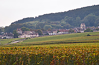 Vineyard. View to Volnay Village. Pommard, Cote de Beaune, d'Or, Burgundy, France