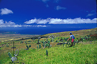 Biking high above the coastline on the Big Island of Hawaii