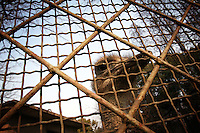 CHINA. Hubei Province. Wuhan. An ostrich in an enclosure in Wuhan zoo. In many of China's 'second-tier' cities, away from the modern zoos in the megacities of Beijing and Shanghai, hide a plethora of smaller unknown zoos. In these zoos, what can only be described as animal abuse is subtly taking place in the form of deprivation of light, space, sanitation and social contact with other animals. Living in awful conditions, these animals spend there days entertaining tourists who seem oblivious to the animals' plight and squalid existence. 2008.