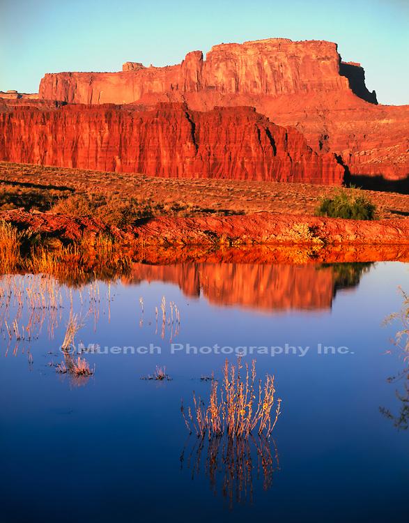 Rainpool,White Rim Trail,Canyonlands National Park,Utah
