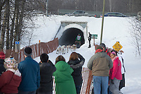 Fans line the bike/ski trail and watch Kelly Maxiner as he and his team run through a culvert during the ceremonial start of the Iditarod sled dog race Anchorage Saturday, March 2, 2013. ..Photo (C) Jeff Schultz/IditarodPhotos.com  Do not reproduce without permission