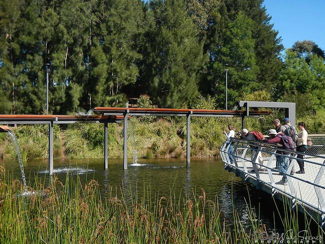 Sydney Park Wetlands Photo Walk. The wetlands us located in St Peters, Sydney, NSW, Australia